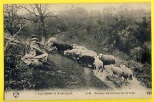 cpa FRANCE Métier AUVERGNE BERGÈRE Gardienne GARDEUSE de MOUTONS Shepherdess