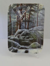Bradford Northwoods Grandeur Awaits a Woodland Paradise Third Issue Plate Owl