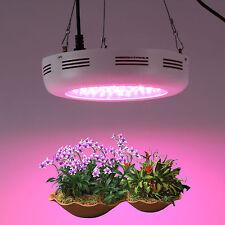 180W UFO PopularGrow LED Wachsen litch Hydrokultur VollSpektrum Pflanzen lampe