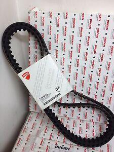 Cinghie Distribuzione Ducati Monster 821 - 73740252A Ducati Toothed Belt
