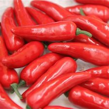 50 pcs Faux Red Chili Peppers Artificial Vegetables Home Party Props Decorations