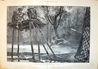 Old 1892 Tiger Hunting Mysore India Sport Man Shooting Woodville Fine 19th