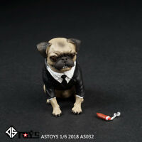 ASTOYS AS032 1/6 Simulation Pug Puppy Dog & Cigar Set Animal Model F 12'' Figure