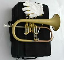 Professional Bb Flugelhorn Satin NEW Flugel Monel Piston With Case Mouthpiece