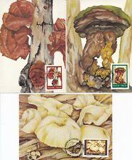 Brazilië - 3 Maximumkaarten paddenstoelen (fungus) 1984 - Blanco