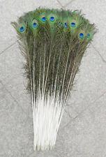 10 pcs 70-80 cm/28-32 inches peacock eye multi-purpose decoration option