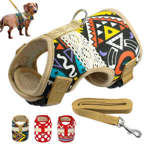 Small Dog Harness and Lead Set Mesh Breathable Vest for French Bulldog Yorkie