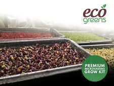 More details for  microgreens kit multi tray eco greens