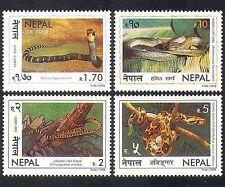 Népal 1998 COBRA/python/serpent/Nature/REPTILES/Animaux/Faune 4 V Set (n37207)