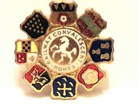 Vintage Enamel Badge/pin - Railway Convalescent Homes -Made by H W Miller (1950s