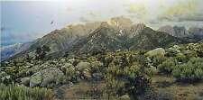 Larry Dyke John 8:32 Desert Landscape Mountains Mustang Horses S/N Ltd Ed