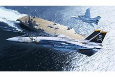 "1/72 F-14A Tomcat ""Jolly Rogers""."