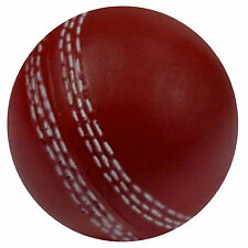 CRICKET BALL - FUN NOVELTY ROUND FRIDGE MAGNET - BRAND NEW - GIFT