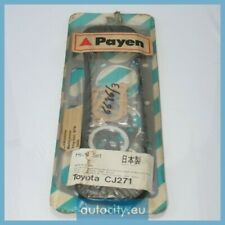 Payen CJ271 Gasket Set, cylinder head