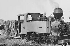 Queensland Cane Railways Steam Marian Sugar Mill Fowler Loco Arrival Yard Mackay