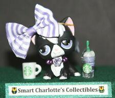 Littlest Pet Shop Lps no # Puzzle black angora longhair cat purple Eyes Preowned