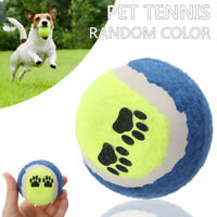 Tennis Balls For Pets Dogs Play Toys Puppy Bouncing Training Toy Color Random