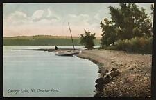 Cayuga Lake NY Crowbar Point 1910 The Hugh C Leighton Co 3481
