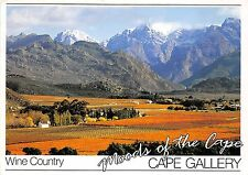 BG13769 wine country cape gallery south africa