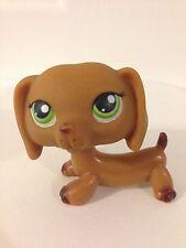 Littlest Pet Shop Brown Dachshund With Green Eyes #139