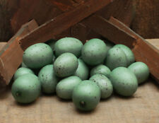 24 Blue/Green Bird EGGS w/Speckles ~ Assorted Sizes ~ Easter