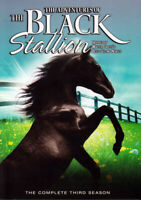 The Adventures of the Black Stallion - The Com New DVD