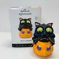 Hallmark Keepsake Halloween Ornament Cat O'Lantern Glow In The Dark 2013