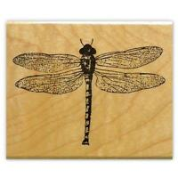 realistic DRAGONFLY Mounted insect rubber stamp, bug, flying insect #12