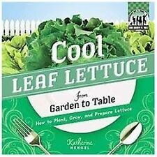 Cool Leaf Lettuce from Garden to Table: How to Plant-ExLibrary