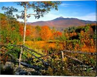 Autumn landscape of Mount Chocorua, New England, New Hampshire by Jaynes Gall...