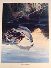 Arctic Grayling Vintage Bob Hines Fish Art Print US Dept Of Interior 1972