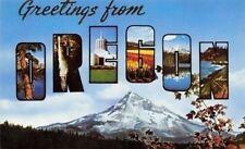 Mt Hood Oregon~Large Letter CHROME Multiple Scenes of State~1950s Postcard