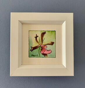 """Framed Original Miniature Watercolour """"Pink &  Brown Orchid"""" North Queensland."""