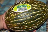 Melon seeds Tendral Ukraine heirloom Vegetable seeds