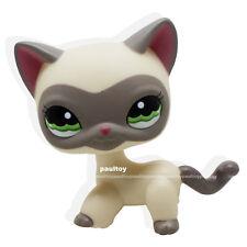 Littlest Pet Shop Cream Standing Cat Around the World Masked Mask Grey LPS #1116