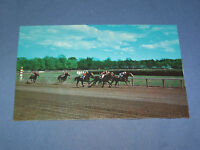 VINTAGE IN THE STRETCH  RACE TRACK SARATOGA SPRINGS NEW YORK   POSTCARD