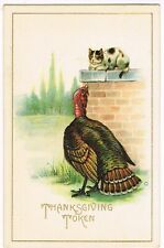 Antique Embossed Thanksgiving Postcard Kitten And Turkey Looking At Each Other