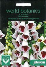 World Botanics Foxglove Pams Choice seed
