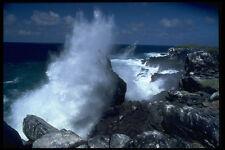 381025 Cappa ISOLA Sfiatatoio Galapagos isole A4 FOTO STAMPA