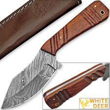 WHITE DEER SPEY BLADE Damascus Steel Hunting Skinner Knife Cocobolo Wood Handle