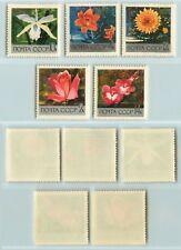 Russia USSR, 1969,  SC 3596-3600 MNH, flowers. rt2916
