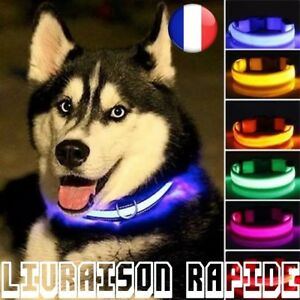 LED Dog Collar Night Light Safety Flashing Glow Pet Cat Dog Light