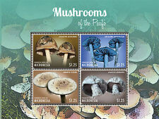 Micronesia-2013-Flora-MUSHROOMS OF THE Pacific