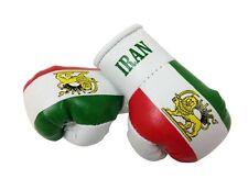 1 Paar Mini Boxhandschuhe Iran 9 cm x 4,5 cm Kunstleder