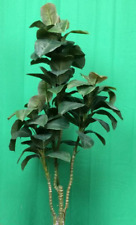 4' RUBBER PALM ARTIFICIAL SILK TREE PLANT ARRANGEMENT TROPICAL BUSH TOPIARY TREE