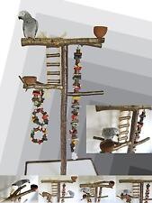 FREISITZ aus HASELNUSSHOLZ, mittelgroße Papageien, Großsittiche, Zubehör, 165 cm
