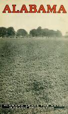 1900 PICKENS County, Alabama AL, History and Genealogy, Ancestry DVD CD V92