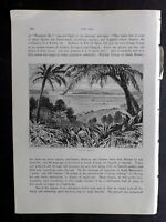 Whymper 1880 Antique Print. View in Jamaica