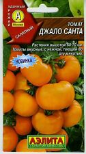 "Tomato ""Djalo santa"" Russian High Quality seeds"