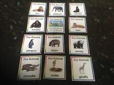 zoo animals flashcards  EYFS SEN early years resources teaching kids